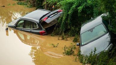 Всемирный потоп: версия 2021 года