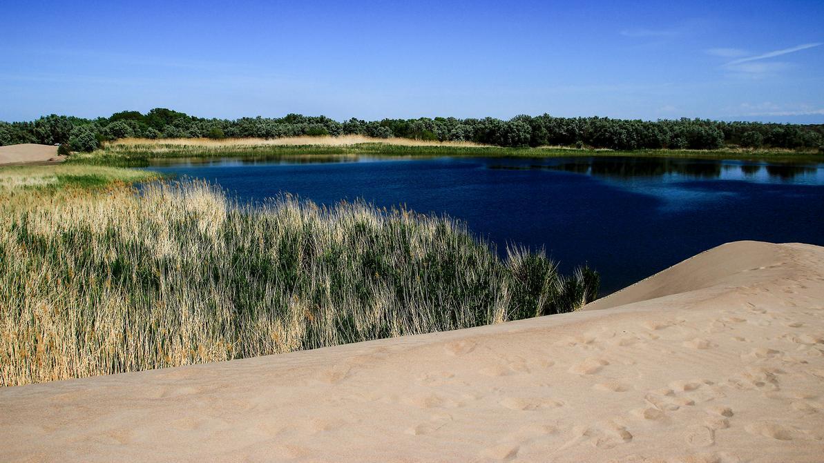 Маршрут выходного дня: едем рыбачить на Деревянное озеро