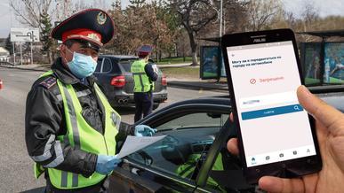Как проверить, разрешено ли вашему авто ездить по Алматы