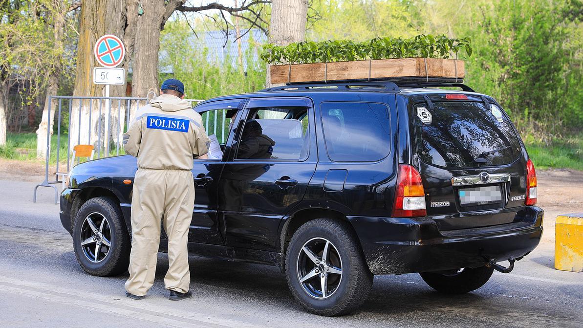Разрешить дачникам выезжать из города предлагает МВД РК