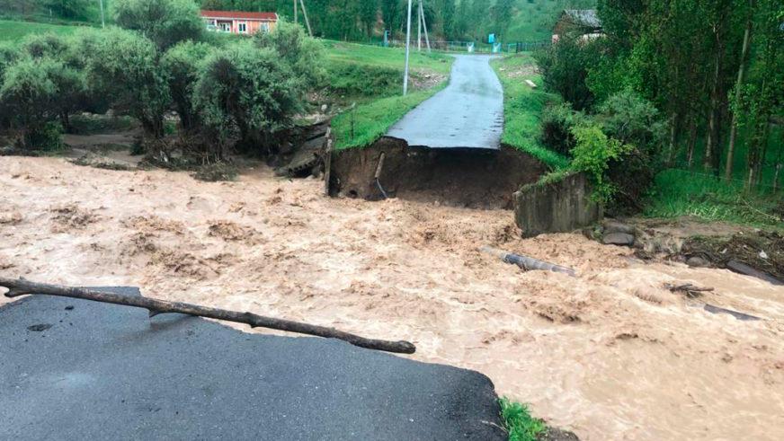 Река смыла мосты и затопила посёлки в Туркестанской области