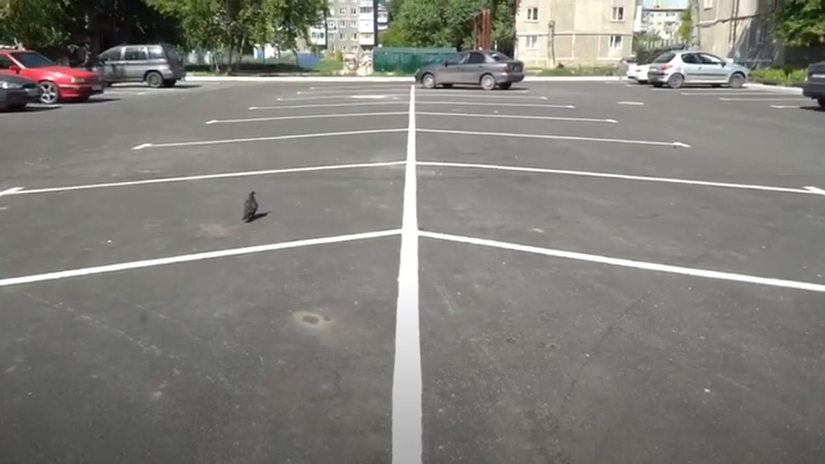 Десять бесплатных парковок обустроят в Петропавловске