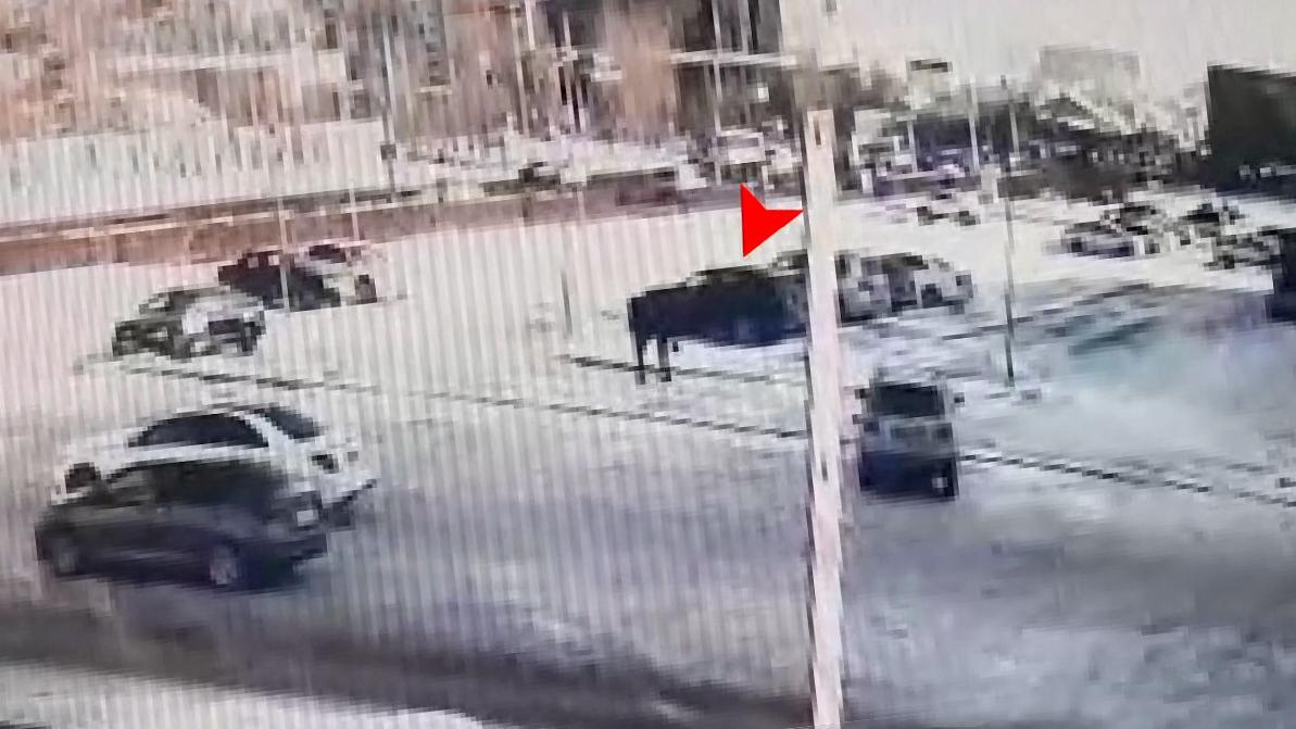 Житель столицы инициировал угон Toyota RAV 4, чтобы не платить кредит