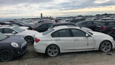 Самое большое кладбище BMW
