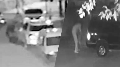 16 иностранных госномеров за одну ночь украл житель столицы