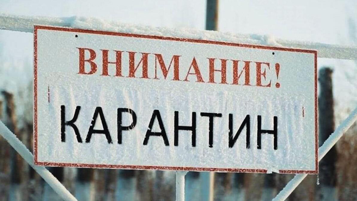 На карантин до 29 января закроют Талдыкорган