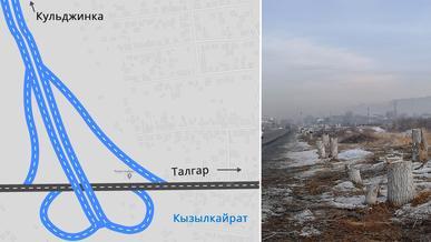 Деревья на Талгарском и Кульджинском трактах спилили для строительства развязок БАКАД