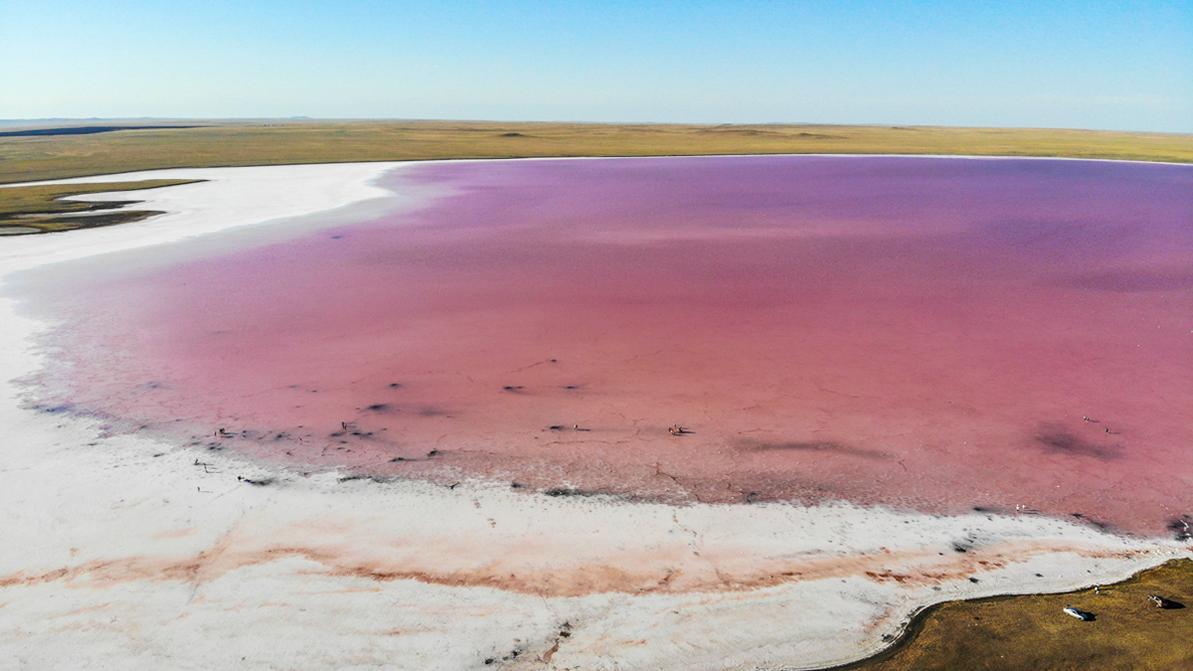 Закрытие розового озера и блокпосты в Боровом