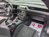 Ford Mustang 2019 года за 12 600 000 тг. в Алматы – фото 5