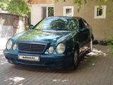Mercedes-Benz CLK 230 1999 года за 1 900 000 тг. в Нур-Султан (Астана)