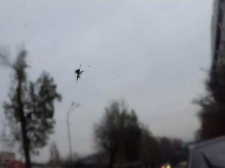 Ремонт трещин на выезд! Круглосуточно! в Алматы – фото 40