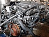 Контрактный двигатель 1.4 AKQ Volkswagen Golf 4 аналог: ahw, ape… за 205 000 тг. в Семей – фото 3