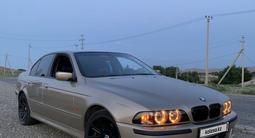 BMW 525 2000 года за 3 000 000 тг. в Тараз – фото 4