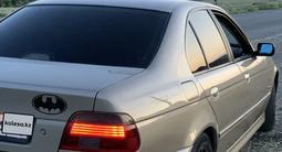 BMW 525 2000 года за 3 000 000 тг. в Тараз – фото 5