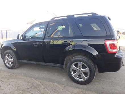 Ford Escape 2011 года за 3 200 000 тг. в Шымкент – фото 3