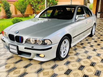 BMW 530 2000 года за 4 700 000 тг. в Шымкент – фото 2