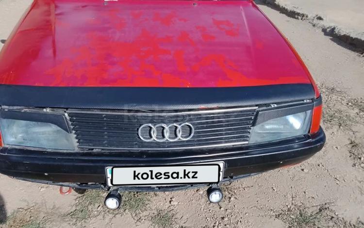 Audi 100 1987 года за 550 000 тг. в Шу