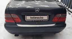 Mercedes-Benz CLK 230 1999 года за 2 000 000 тг. в Кокшетау – фото 4