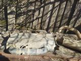 Задняя выхлопная банка за 20 000 тг. в Таскала – фото 2