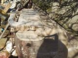 Задняя выхлопная банка за 20 000 тг. в Таскала – фото 3
