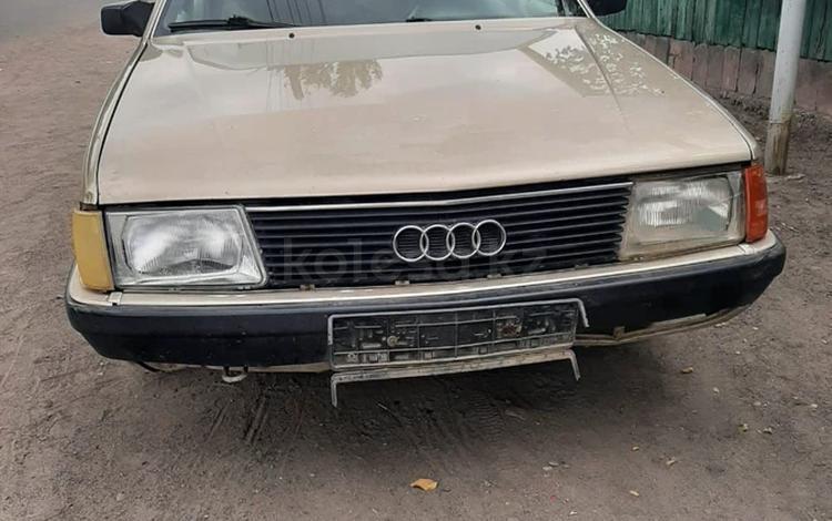 Audi 100 1985 года за 500 000 тг. в Шу