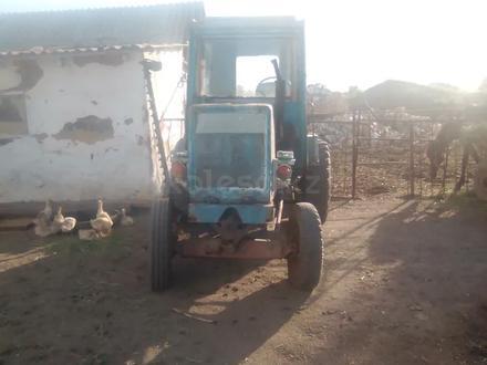Трактор в Саумалколь