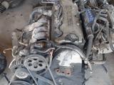 ДВС Хонда 2.0 F20B6 за 2 021 тг. в Шымкент