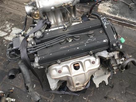 Двигатель на хонда за 210 000 тг. в Алматы – фото 4