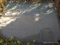 Заднее лобовое стекло за 20 000 тг. в Алматы