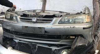 Honda Accord Нускат морда за 130 000 тг. в Алматы