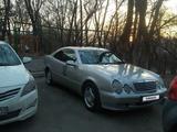 Mercedes-Benz CLK 320 1998 года за 2 900 000 тг. в Алматы