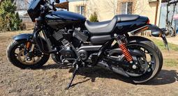 Harley-Davidson  STREET ROD 750 2018 года за 3 350 000 тг. в Алматы – фото 5