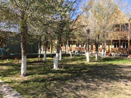 База отдыха. Капшагай. в Алматы – фото 7