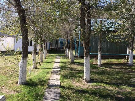 База отдыха. Капшагай. в Алматы – фото 8