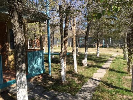 База отдыха. Капшагай. в Алматы – фото 10