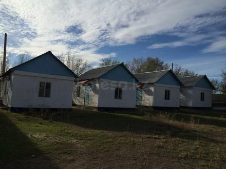 База отдыха. Капшагай. в Алматы – фото 17