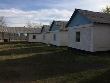 База отдыха. Капшагай. в Алматы – фото 18