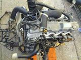 Kонтрактный двигатель (акпп) Mitsubishi Delica 4М40, D4BH.D4BF за 550 000 тг. в Алматы – фото 5