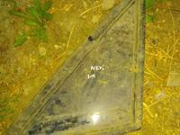 Глухое стекло daewoo nexia за 3 000 тг. в Алматы