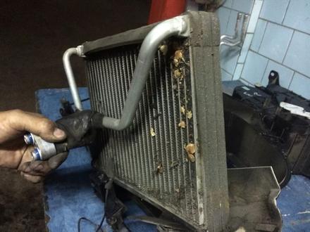 Ремонт и заправка авто кондиционеров в Алматы – фото 37