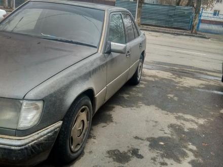 Mercedes-Benz E 260 1990 года за 990 000 тг. в Павлодар – фото 8