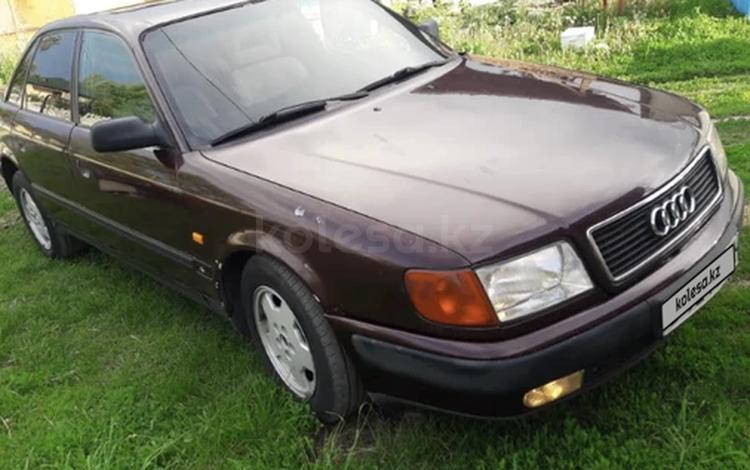 Audi 100 1993 года за 1 600 000 тг. в Есик
