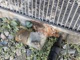 Радиатор медный за 20 000 тг. в Алматы – фото 2