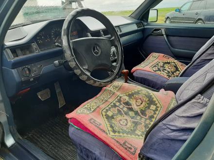 Mercedes-Benz E 260 1989 года за 850 000 тг. в Нур-Султан (Астана) – фото 11