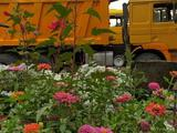 Shacman 2007 года за 5 500 000 тг. в Кордай – фото 2