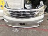 Ноускат (морда) для Toyota alphard за 235 000 тг. в Алматы