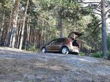 Renault Sandero Stepway 2014 года за 4 100 000 тг. в Петропавловск