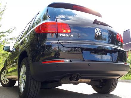 Volkswagen Tiguan 2016 года за 6 200 000 тг. в Костанай – фото 31