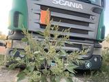 Scania  R420 2008 года за 10 500 000 тг. в Актобе – фото 2