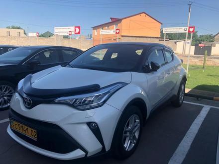 Прокат авто Тойота в Шымкенте в Шымкент – фото 11